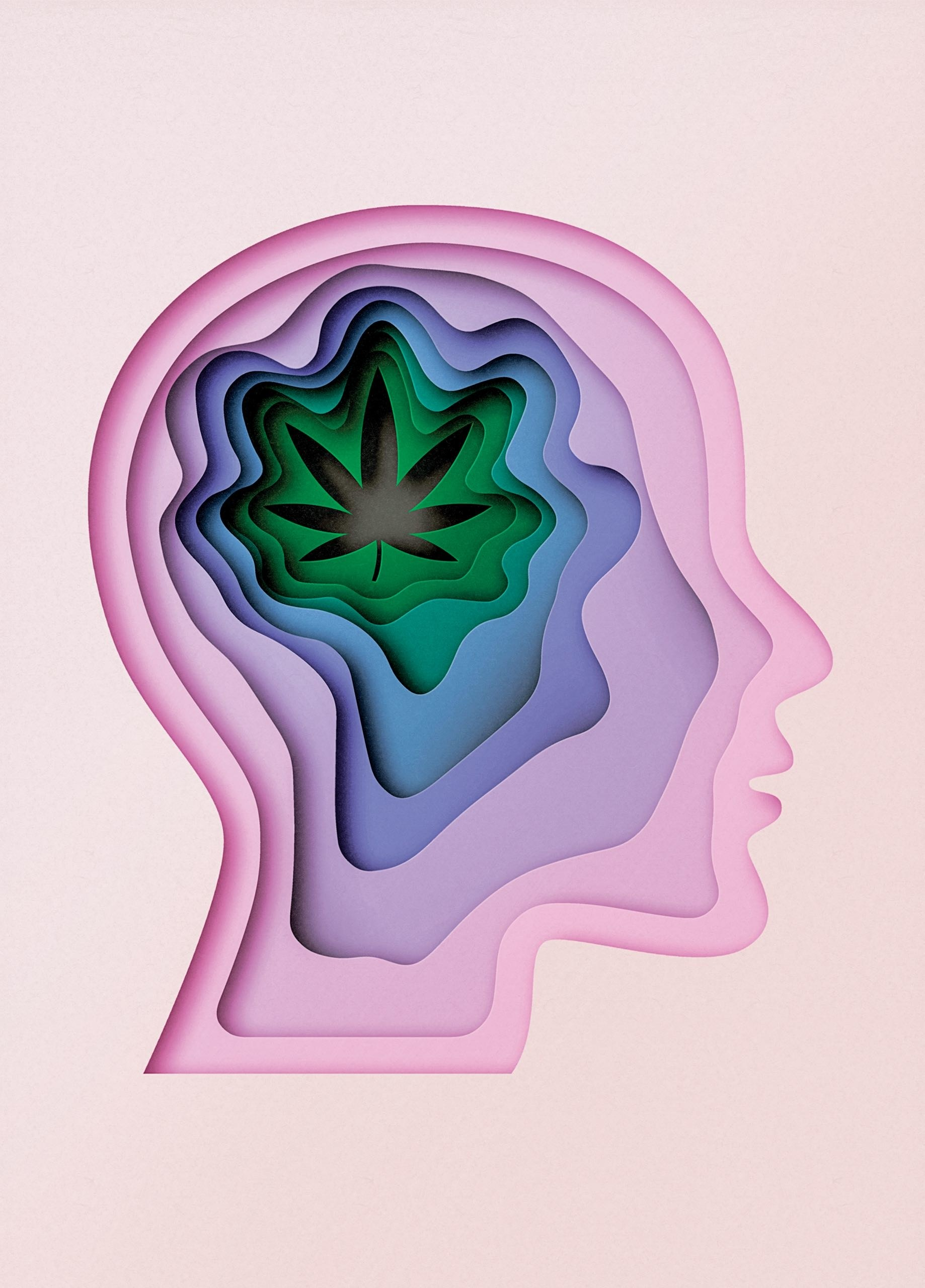 Short-Term Effects Of Marijuana On The Brain